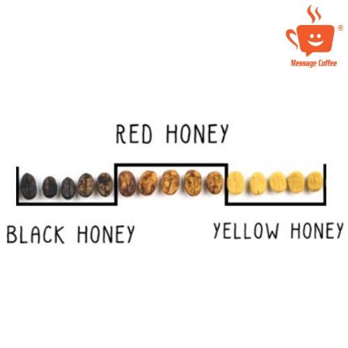 Robusta Honey - cà phê chất lượng cao